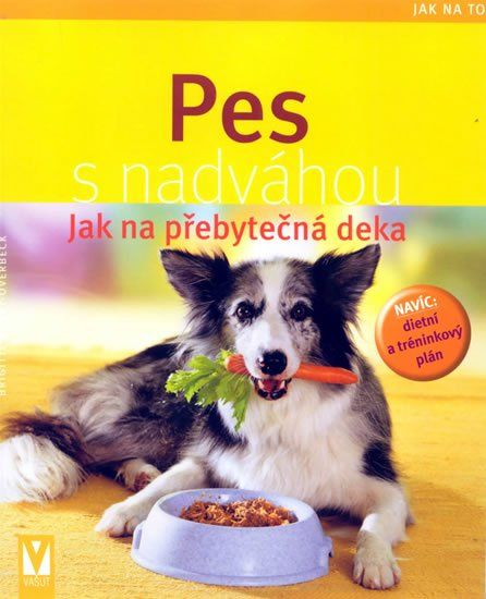 PES S NADVÁHOU