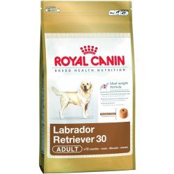 ROYAL CANIN LABRADOR RETRÍVR ADULT 12kg