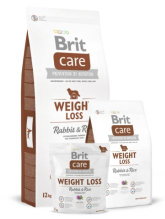 BRIT CARE DOG LIGHT 12kg